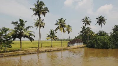 The calm, muddy backwaters of Kerala, India - wide shot