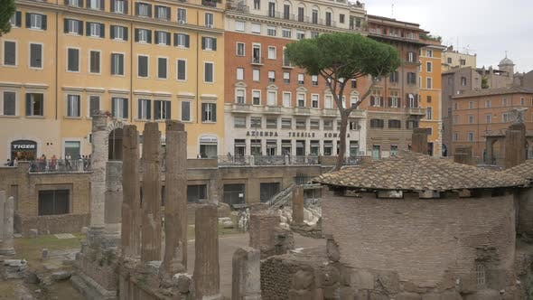 Thumbnail for The ruins in Largo di Torre Argentina square, Rome