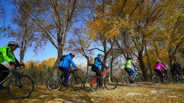 Thumbnail for Autumn Park  Bicycles