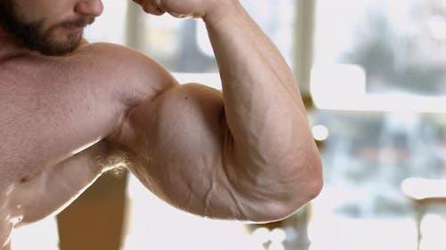 Muskulöser Torso und Arme.
