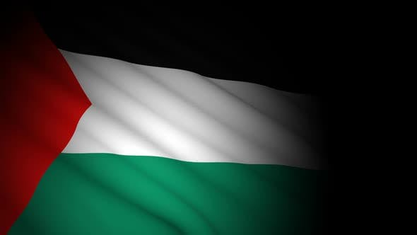Thumbnail for Palestine Flag Blowing in Wind