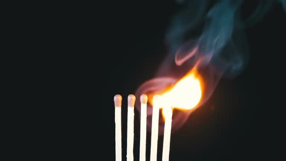 Thumbnail for Chain Reaction of Five Matches Lit and Flame on a Black Background