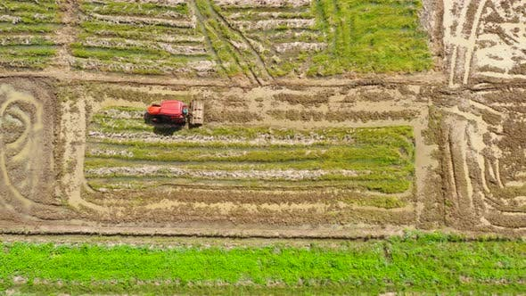 Paddy Field with Water, Top View, Agriculture in the Philippines