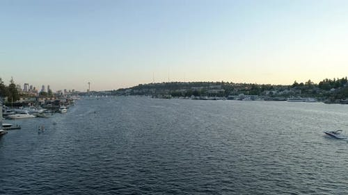 Summer Seattle Washington Lake Aerial View Seagull Stand Up Paddle Boarding Recreational Boat