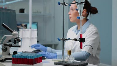 Microbiology Woman Studying Petri Dish in Laboratory