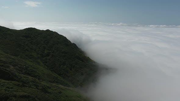 Thumbnail for Flight Over Rainforest