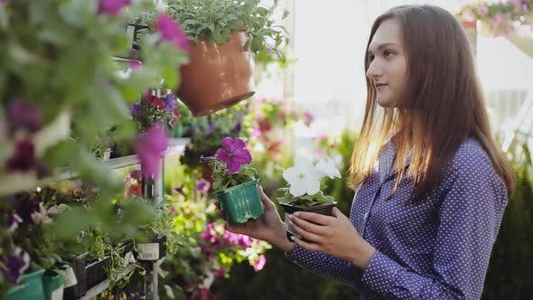 Young woman buying flowers at a garden shop