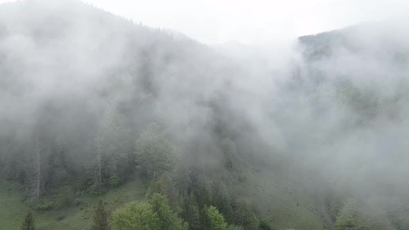 Ukraine, Carpathians: Fog in the Mountains. Aerial. Gray, Flat