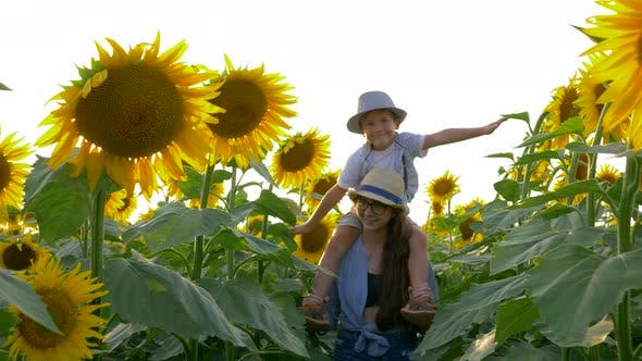 Childhood, Kid Raises Hands Imitating Flight on Sunflower Field Sitting on the Neck of the Sister in