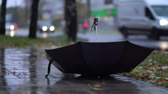 Thrown Black Umbrella on the Road on a Rainy Day