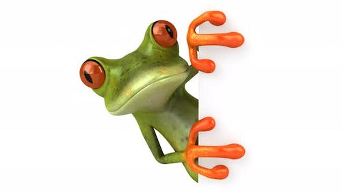 Fun frog with a blank sign - 4K Animation