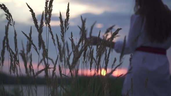 Thumbnail for Beautiful Sunset on the River Bank