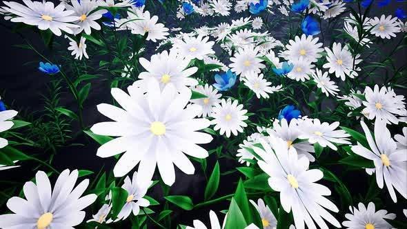Thumbnail for Flower Field Loop #05