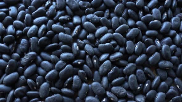 Thumbnail for Black Beans Rotation