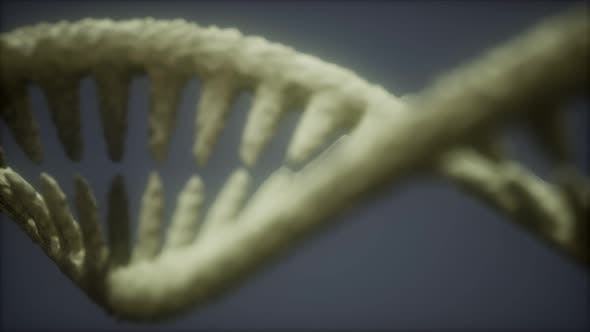 Thumbnail for Bright Particulate 3D Rendered DNA