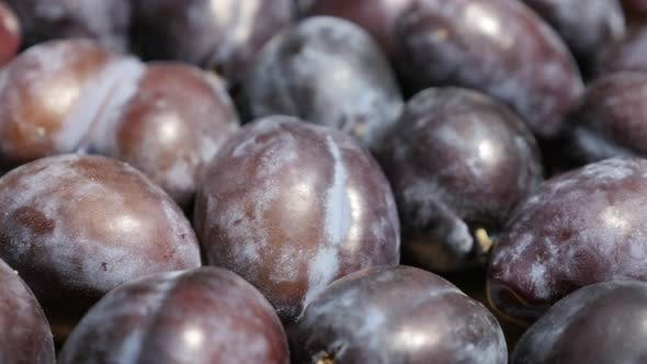 Thumbnail for Shallow DOF organic plum fruit from genus Prunus  4K video