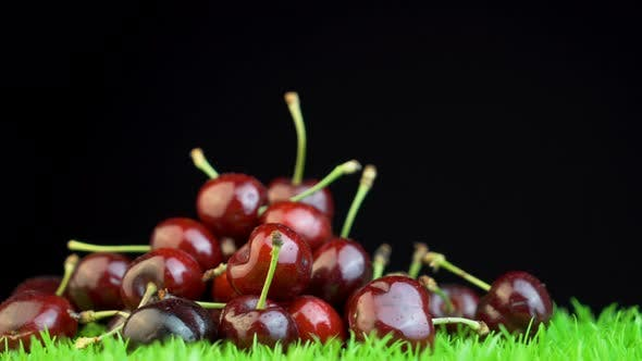Ripe cherries with tails on black background
