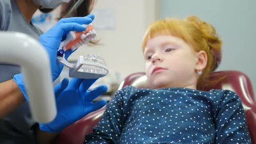 Dentist Showing Little Girl How To Clean the Teeth with Toothbrush Properly on Jaw Model at Dentists