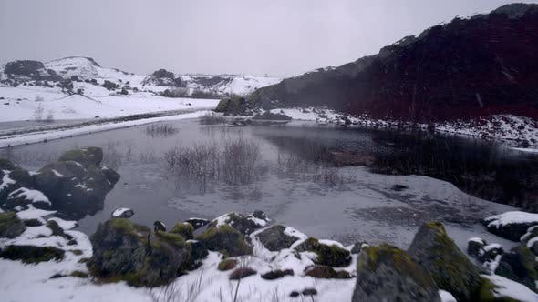 Snowing in the Wetlands