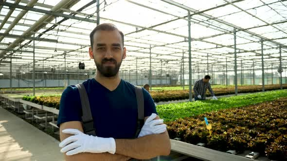 Cover Image for Smiling Young Agronomist in a Greenhouse with Modern Technology