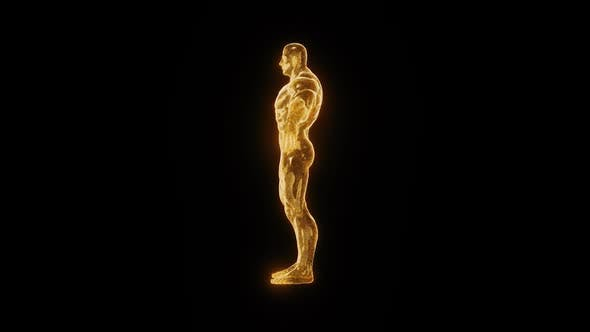 Goldene Bodybuilder Statue Rotierende Hd
