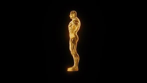 Golden Bodybuilder Statue Rotating Hd