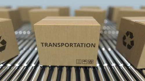 Carton Boxes with TRANSPORTATION Text Move on Conveyor