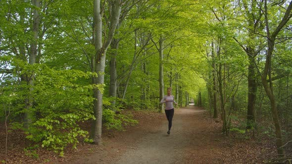 Thumbnail for Woman Jogging Through Forest