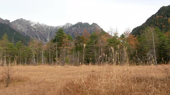 Mountain With Dry Grass field