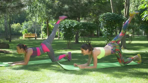 Thumbnail for Active Fit Women Exercising on Yoga Mats Outdoors