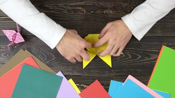 Man Folding Origami Figure, Top View.