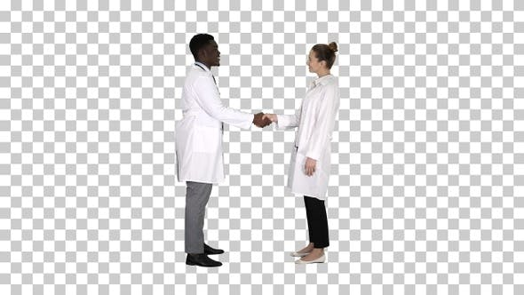 Thumbnail for Nice to meet you Doctors meet and shake hands, Alpha Channel