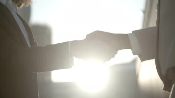 Thumbnail for People Wearing Suits Shaking Hands Against Sunbeams