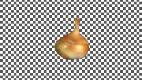 Onion Rotating With Alpha Channel