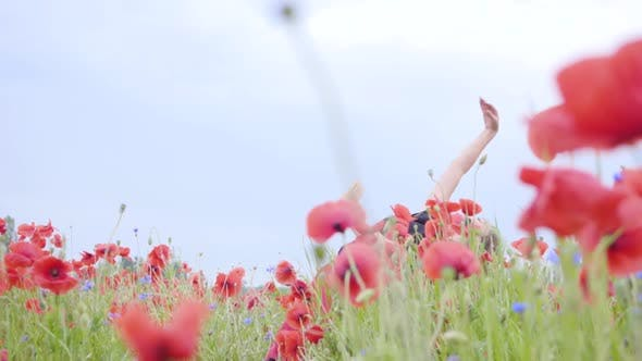 Thumbnail for Pretty Young Girl Dancing in a Poppy Field Smiling Happily