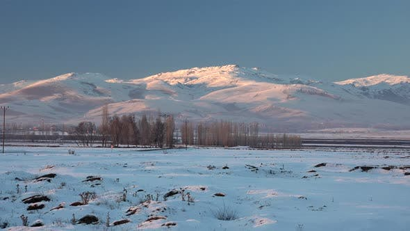 Thumbnail for Mountains Behind Poplar Trees on Flat Snowy Plain in Winter