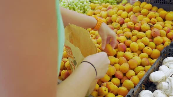 Thumbnail for Picking Apricots From the Fruit Pack