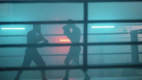 Zwei Boxer im Ring
