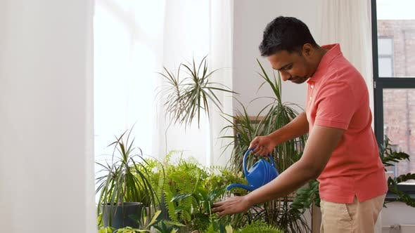 Thumbnail for Indian Man Watering Houseplants at Home