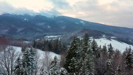 Thumbnail for Vue aérienne de forêt couverte de neige dans les montagnes