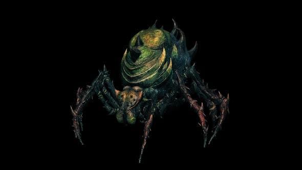 Poison Spider Roar