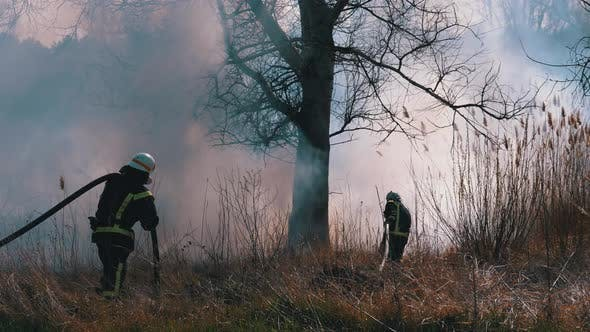 Thumbnail for Two Firefighters in Equipment Extinguish Forest Fire with Fire Hose. Slow Motion