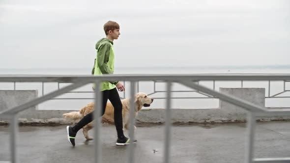 Thumbnail for Teenage Boy Walking Labrador Dog