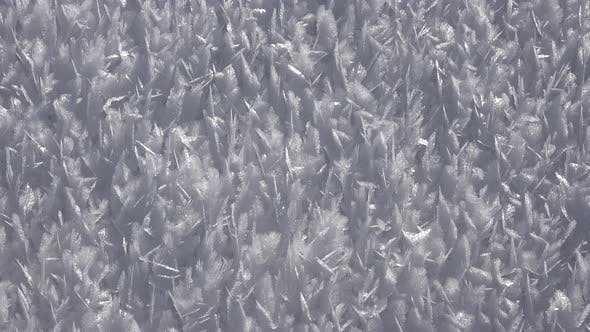 Rime Ice Crystals and Hoar Frost Covered on Untouched Floor