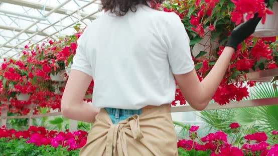 Young Woman Caring for Flowers in Large Greenhouse