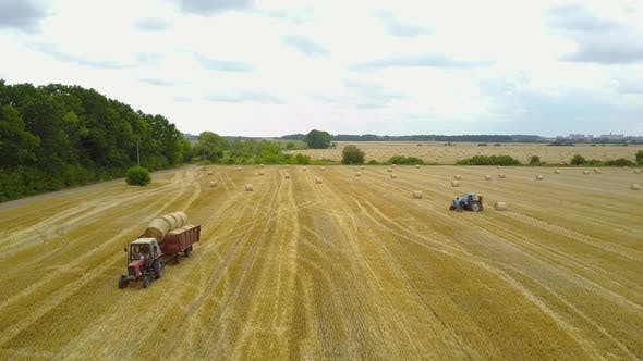 Cover Image for Tractor Loading Bales Of Hay