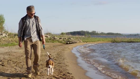 Thumbnail for Cheerful Man Walking with Beagle Dog along Lakeshore