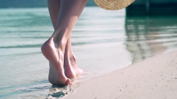 Thumbnail for A Woman Walks Along the Beach.