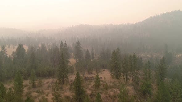 Thumbnail for Wildfire Smoke From Eastern Washington Forest Fire