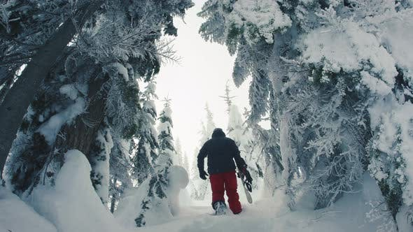 Thumbnail for Man Hiking Mountain Backcountry In Deep Powder Snow Carrying Snowboard